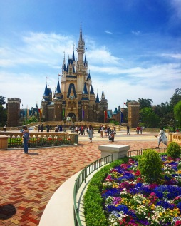 Where dreams come true?