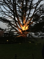 Bilbo's Party tree